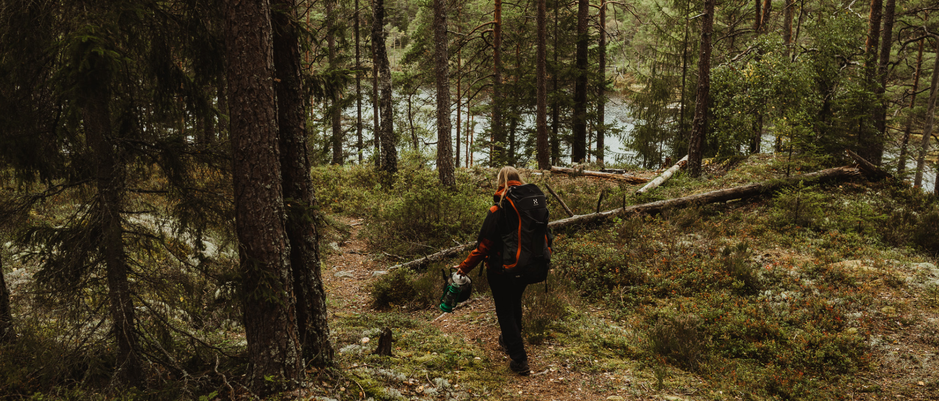hiking in the forest_hafsrød